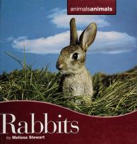 Cover of: Rabbits   Melissa Stewart